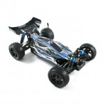 FTX Vantage 1/10 4WD Brushless Waterproof Buggy - FTX5532