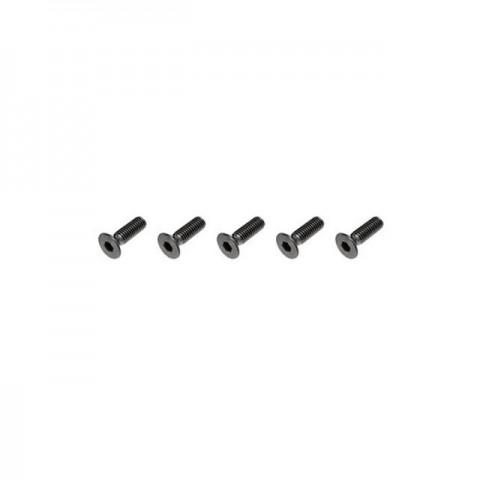 FTX Flat Head M3x10mm Hex Screw (5 Screws) - FTX6536