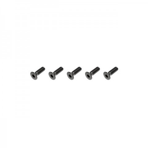 FTX Flat Head M3x10mm Hex Screw (5 Screws) - FTX6536